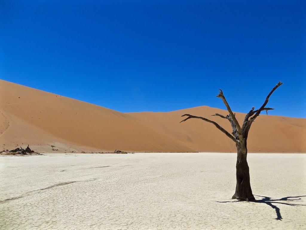 original NAMIB DESERT