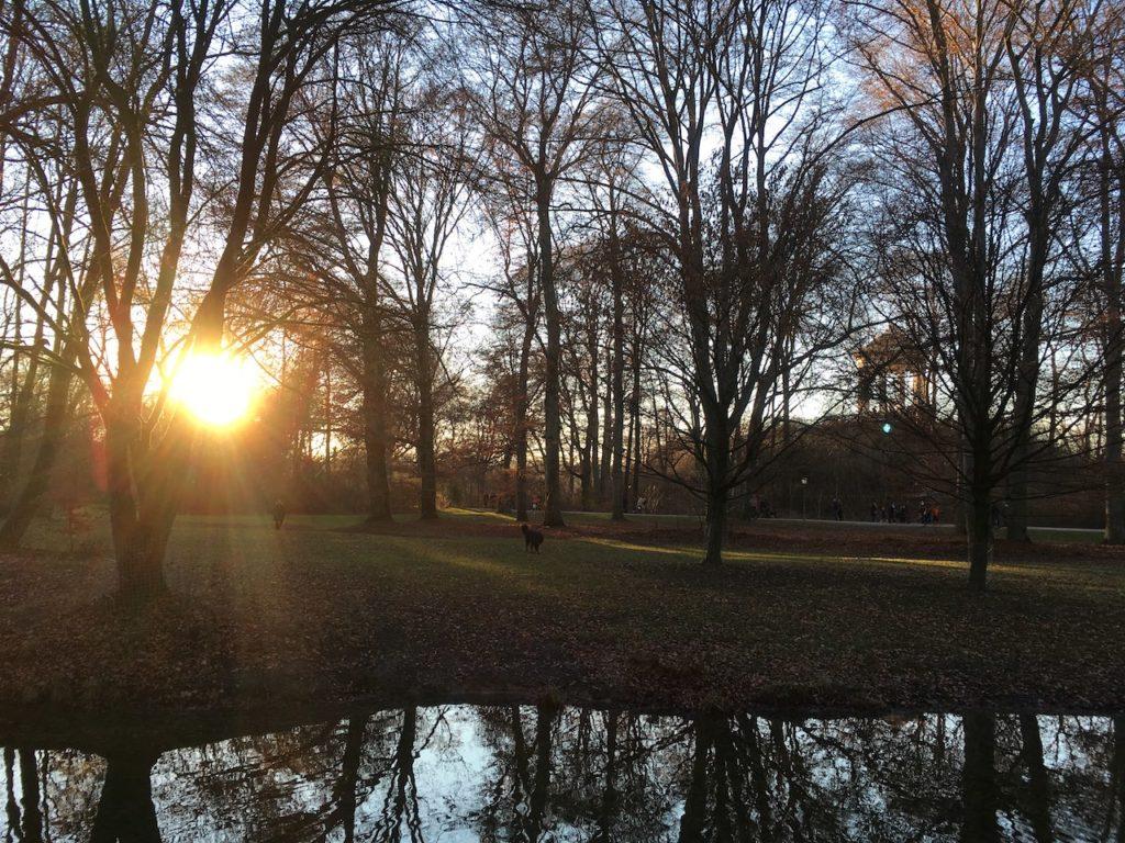 AMAZING SUNSET SCENE