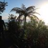 mount-maunganui-newzealand 7