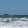 surfing-byron-bay 3