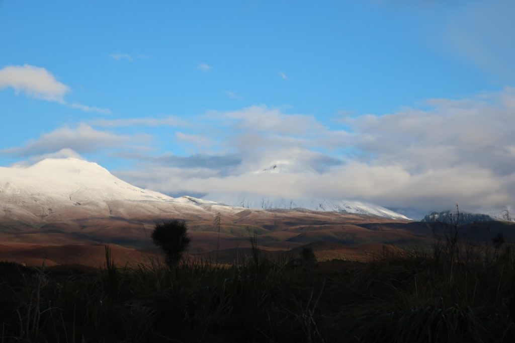 tongariro national park camping